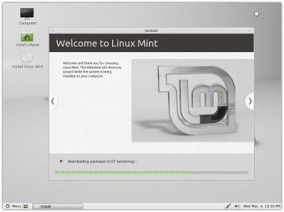 mint11_preview